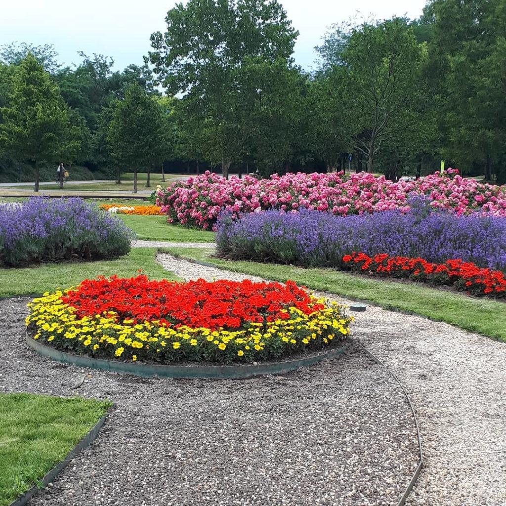 Blumenbeete im Donaupark