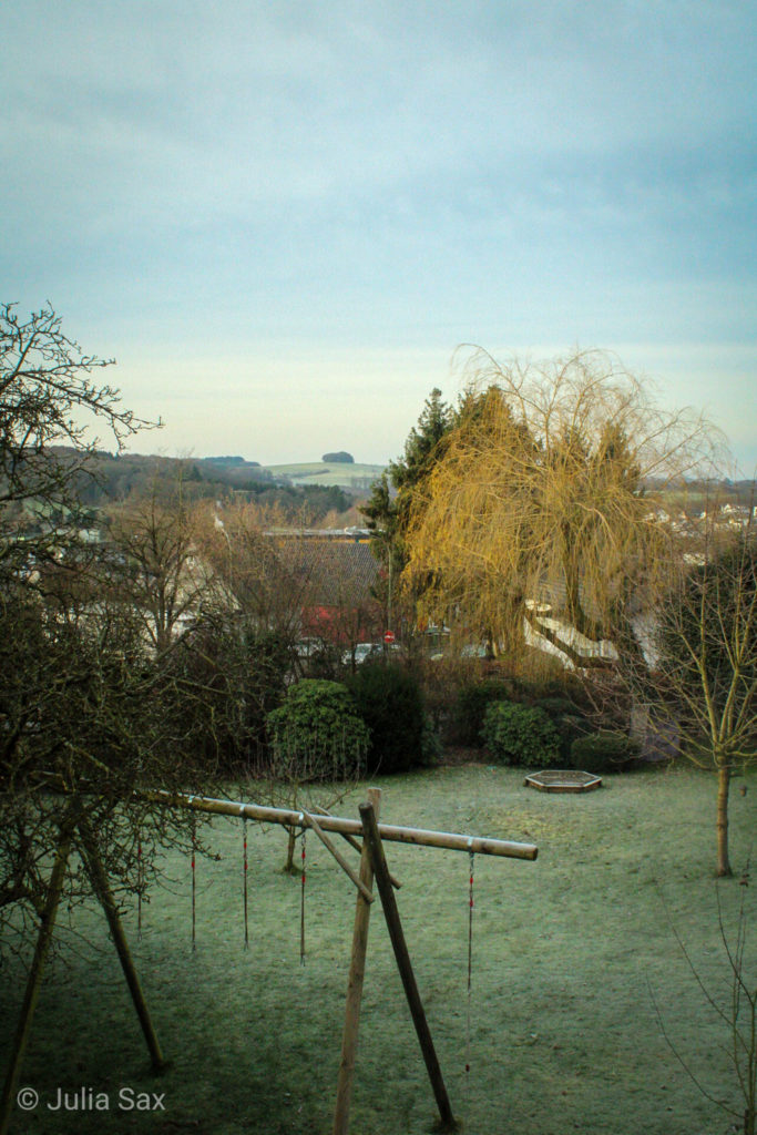 My window view