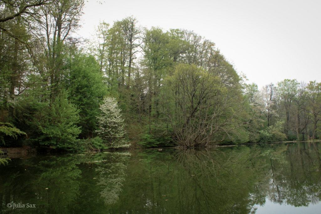 Das Teichufer